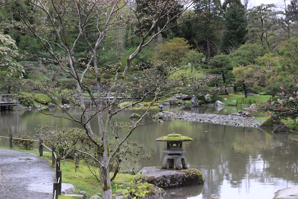 Seattle Japanese Garden landscape